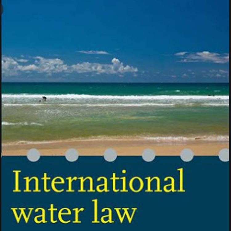 Training Workshop on International Water Law and Treaties to Somali students across the Globe
